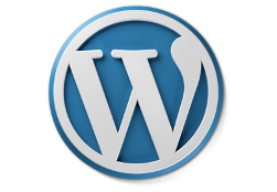 This is an image of WordPress logo